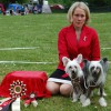 Grace BPIS and her mum BIS at Chinese Crested specialty, May 2011.