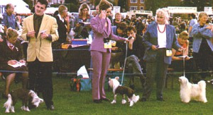 Darlington 2000