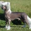 Filip september 2009