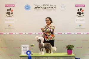 New Junior World Winner Prefix Hemingway